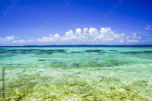 Tuinposter Donkerblauw サンゴ礁の海