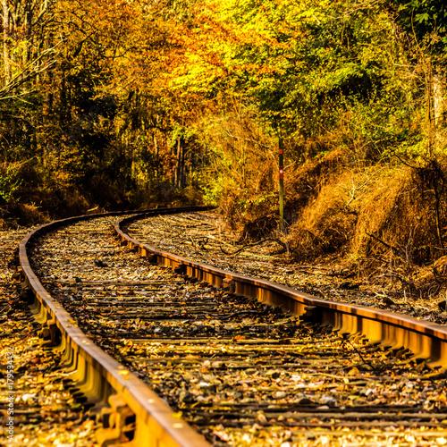 Papiers peints Voies ferrées Railroad Tracks in Autumn II