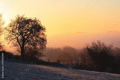 Fotobehang Diepbruine Frosty morning sunrise