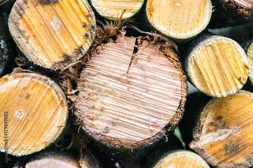 Papiers peints Texture de bois de chauffage Дрова.
