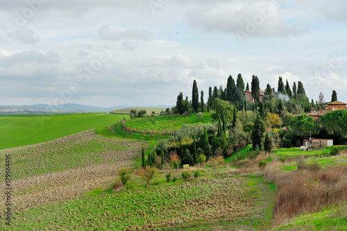 Deurstickers Toscane Tuscan landscape with green meadows and fields