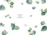 Watercolor vector green floral banner with silver dollar eucalyptus leaves and branches isolated on white background. - 179669439
