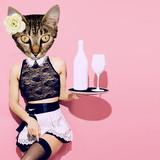 Contemporary art collage. Sexy Kitty waitress. Minimal fashion modern design - 179674680