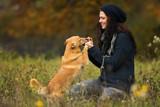 Frau gibt Hund Belohnung