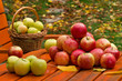 Red Apples with Basket on the Garden Table