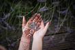 Hände mit Lavendel