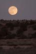 The Moon over the Desert