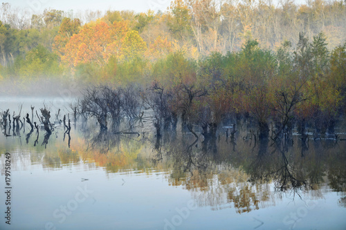 Peaceful Lake View in the Morning - 179758249