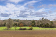 English countryside in autumn with colourful trees blue sky and fields