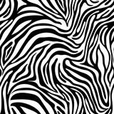 Seamless zebra skin pattern. Wallpaper with black stripes on white background. Zebra stripes hunting camouflage.