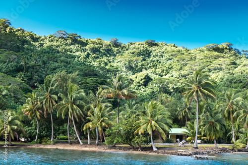 Fotobehang Tropical strand Island Home