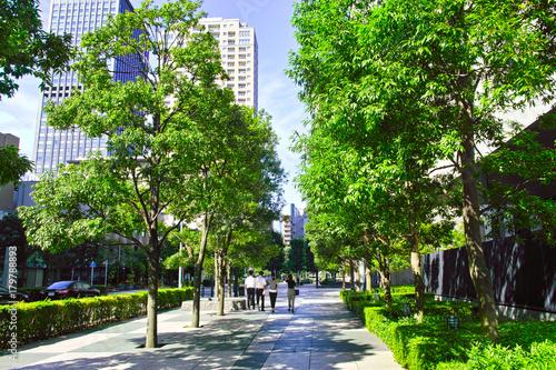 Fotobehang Tokio 東京 木漏れ日のオフィス街(人物あり)