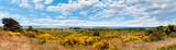 Insel Hiddensee Panorama - 179789085