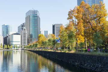 Tokyo central city in autumn / Fall scenery around the Imperial Palace in the central of Tokyo,Japan