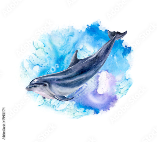 Fototapeta A dolphin realistic and abstract marine, wave background. Watercolor. Illustration. Template. Handmade
