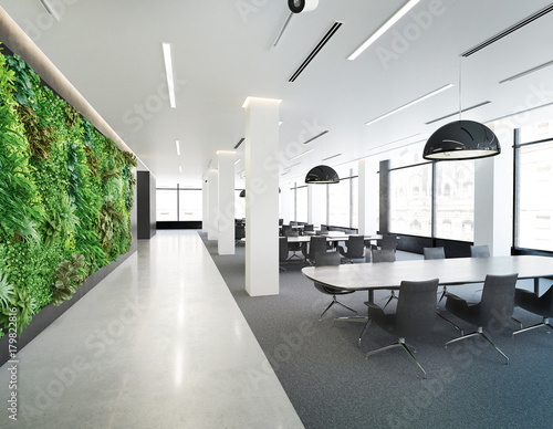 Vertical green wall in modern office building