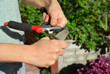 Sharpen Pruning Shears For The Perfect Cut. Cleaning and Sharpening Garden Tools.