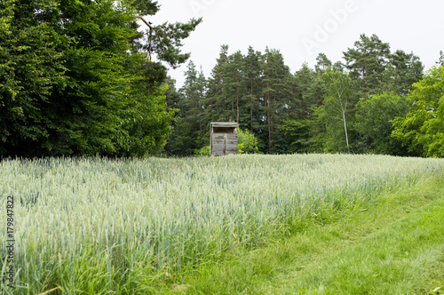 Foto op Canvas Pistache Landschaft mit Hochsitz