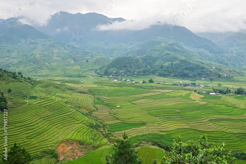Papiers peints Les champs de riz Mu Cang Chai Sapa, Vietnam