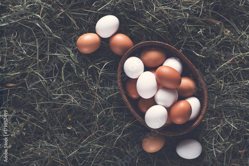 Fresh chicken brown eggs in nest on hay, eco farming background