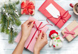 Female hands wrapping christmas gift