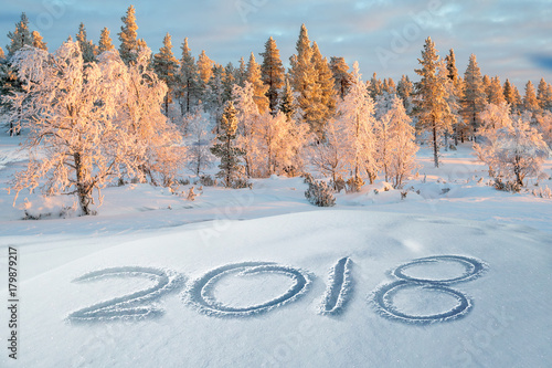 2018 written in the snow, snowy trees landscape in the background