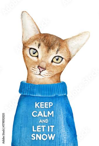 projekt-karty-z-pozdrowieniami-z-wakacji-zimowych-quot-let-it-snow-quot-sliczny-kot-cieply-niebieski-sweter-ze-slynnym-napisem-quot-keep-calm-quot-recznie-malowane-akwarela-ilustracja-na-bialym-tle