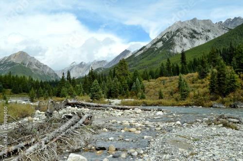 Fotobehang Bergrivier Canadian Rockies and River