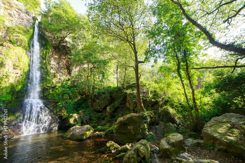 Fotobehang Pistache Landscape of one of water cascades of Oneta waterfalls in picturesque forest of Asturias, Spain.