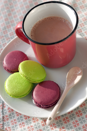 Tuinposter Chocolade Hot chocolate and Macarons