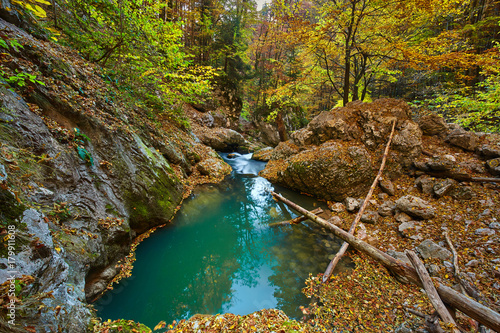Papiers peints Automne Karst spring in the forest