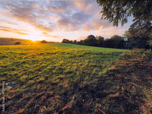 Foto op Plexiglas Diepbruine Early Autumn countryside morning,Northern Ireland