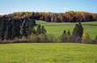 Farm Field near Sussex NB