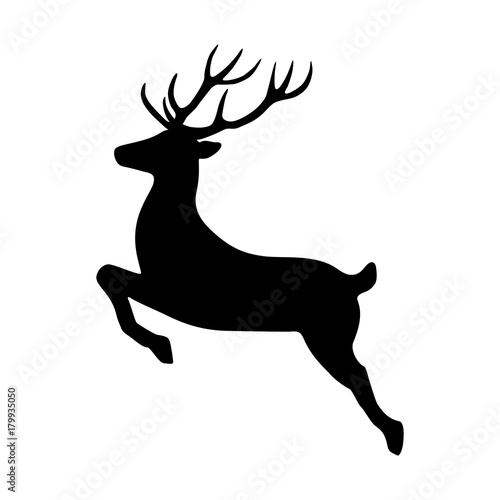 Fototapeta Reindeer