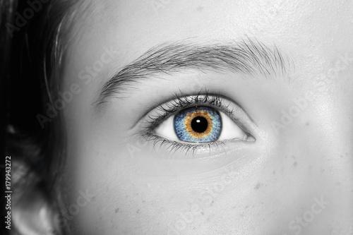 A beautiful insightful look eye. Poster