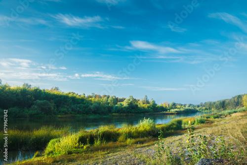 Papiers peints Rivière de la forêt Calm river with forest on the other bank