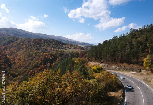 Fotobehang Diepbruine Aerial drone shot of Serpentine, Mountain Highway in the middle of Forest