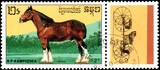 Rp Kampuchea  Circa 1989 A Stamp Printed In Rp Kampuchea Shows A Shire Horse Series Breeds Of Horses Wall Sticker