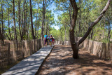 Bassin d'Arcachon, Tourists on wooden path to the ocean