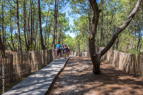 Bassin d'Arcachon, Tourists on wooden path to the ocean - 180011813