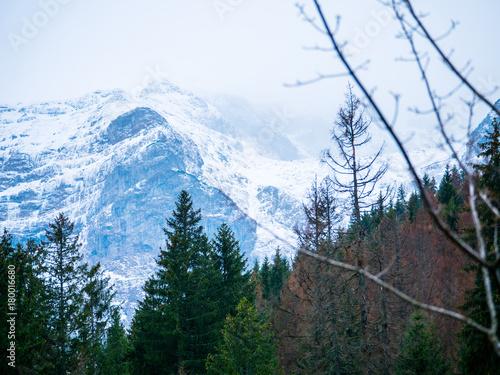 Foto op Canvas Wit Malowniczy górski krajobraz Tatr widziany w listopadowy dzień
