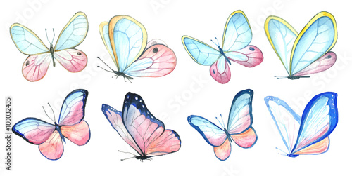 Fototapeta Collection watercolor of flying butterflies.