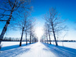 北海道の冬道