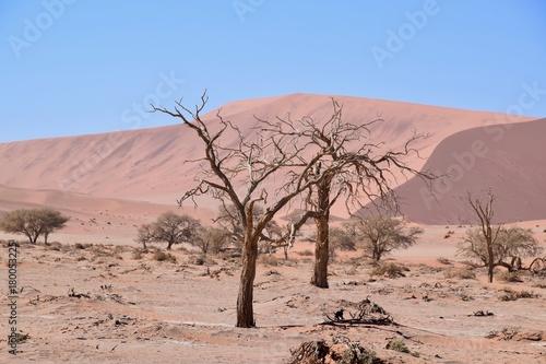 Staande foto Zalm Landschaft Namibia -Wüste