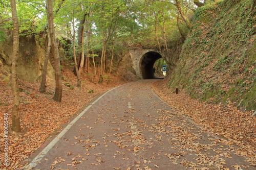 Aluminium Weg in bos Túnel