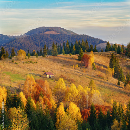 Papiers peints Vieux rose Misty autumn morning landscape in national park. Mountains, blue cloudy sky, yellow, red and green leaves on trees. Lonely rural wooden house. Carpathians, Ukraine. Calm mood image. Square background.
