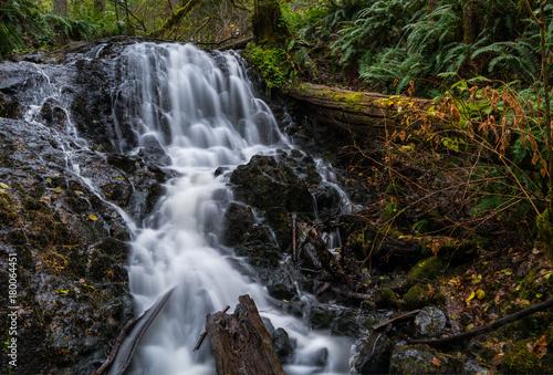 Mima Falls - 180064451