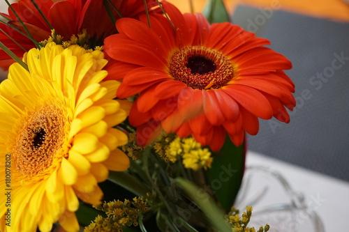 Fotobehang Gerbera Flowers