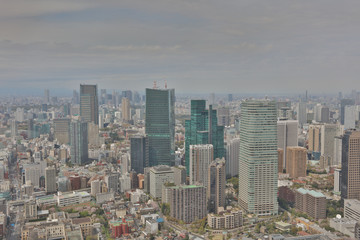 city aerial view from Tokyo Tower