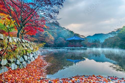 Fotobehang Bleke violet Autumn in Naejangsan Park,korea.